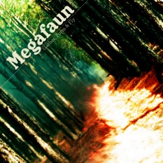 megafaun-gather-form-fly