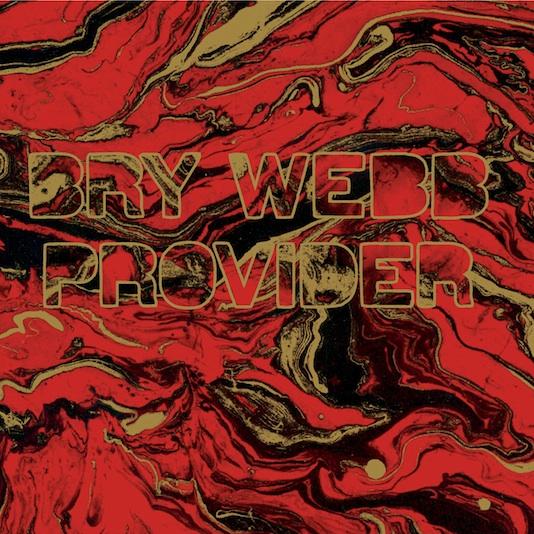 Bry Webb - Provider